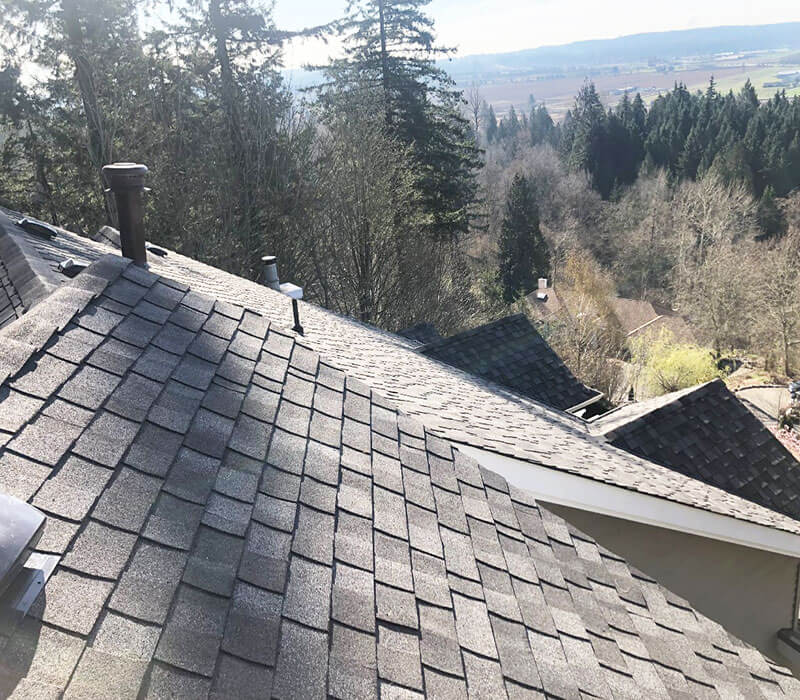 New-Sloped-Roof-Collection - 11.jpg