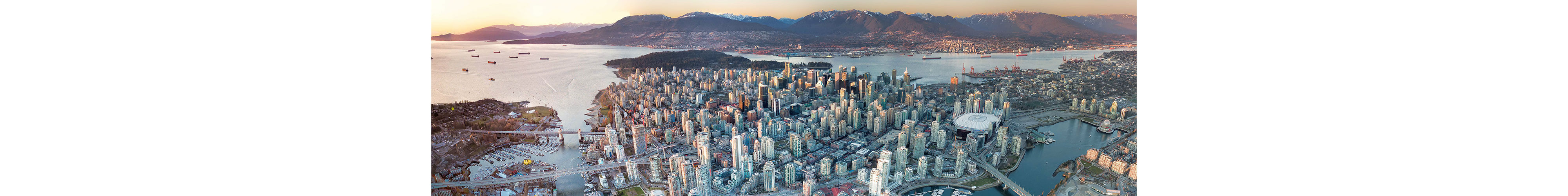 Services - VANCOUVER-ROOFING-SKYLINE.jpg